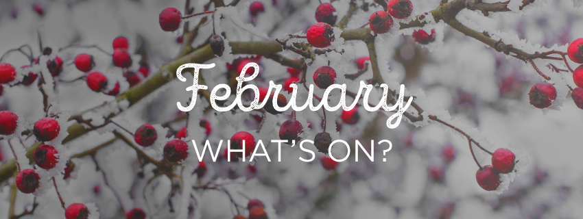 "A graphic that says ""February What's On?"""