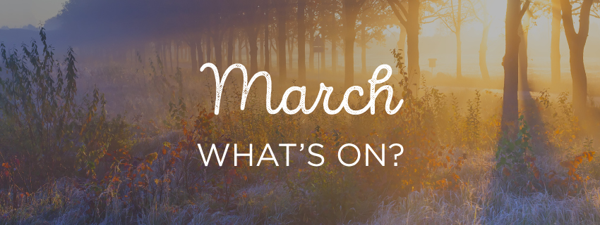 March: What's On?